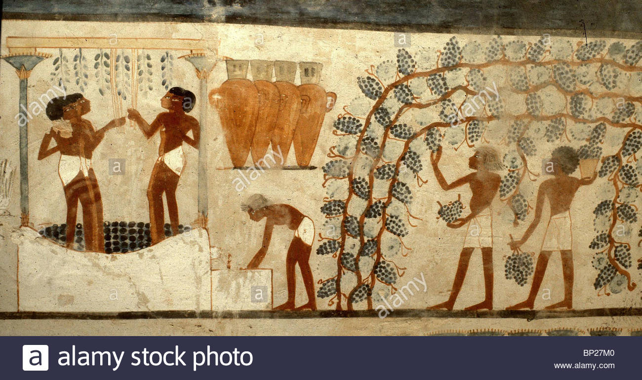 Egyptian Tomb Drawing at GetDrawings.com | Free for personal use ...