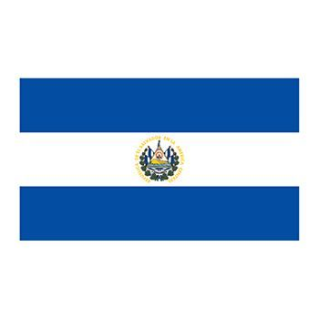 350x350 Flag Of El Salvador Temporary Tattoo Offers Fun Learning
