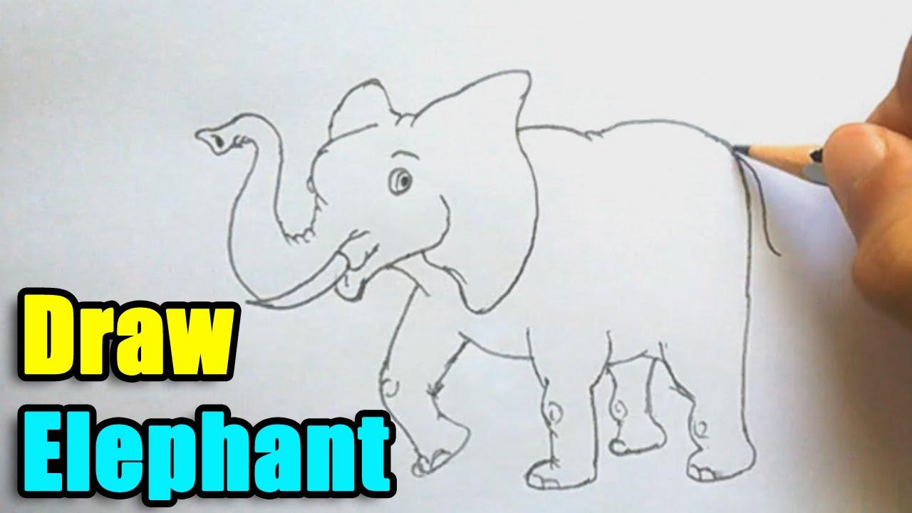 1280x720 How to Draw Elephant