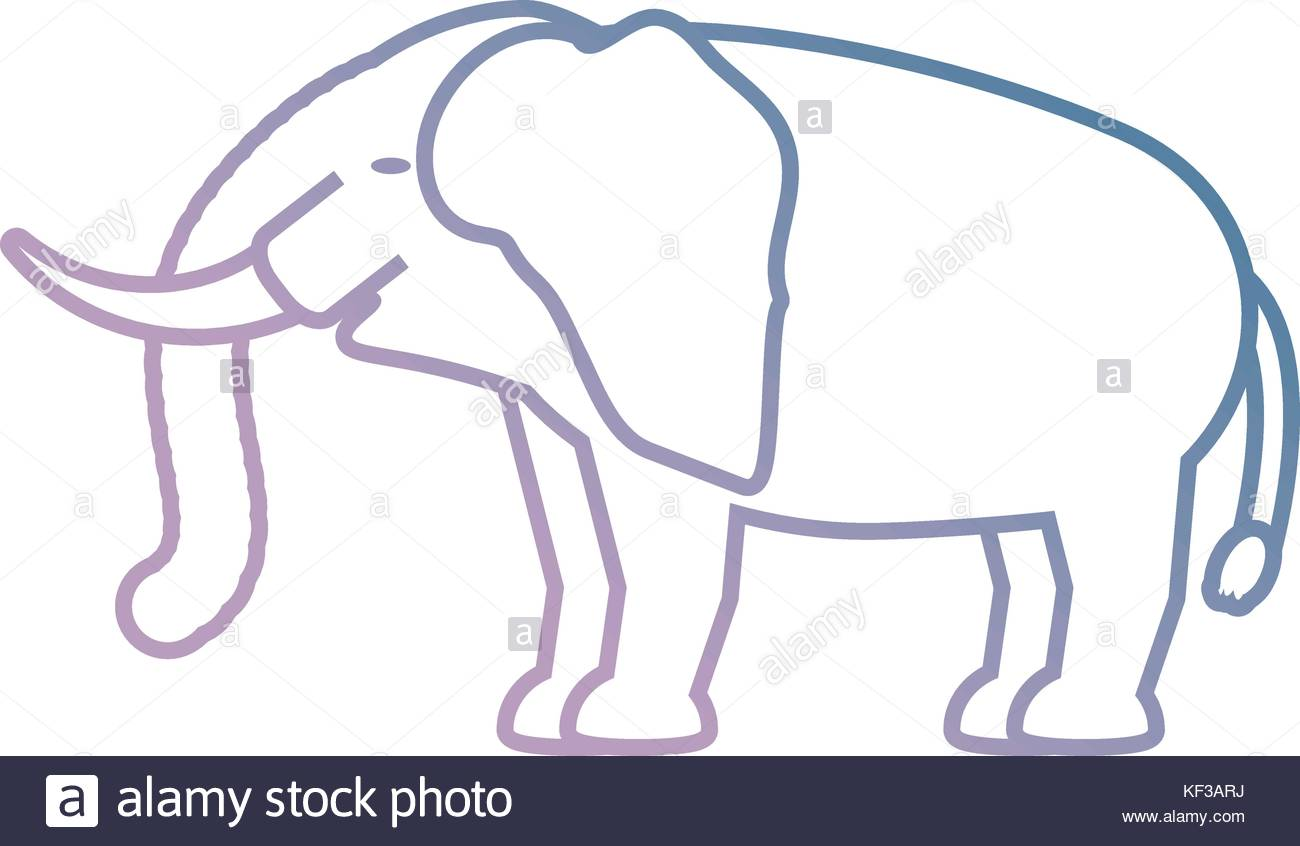 1300x846 Indian Elephant Stock Vector Images