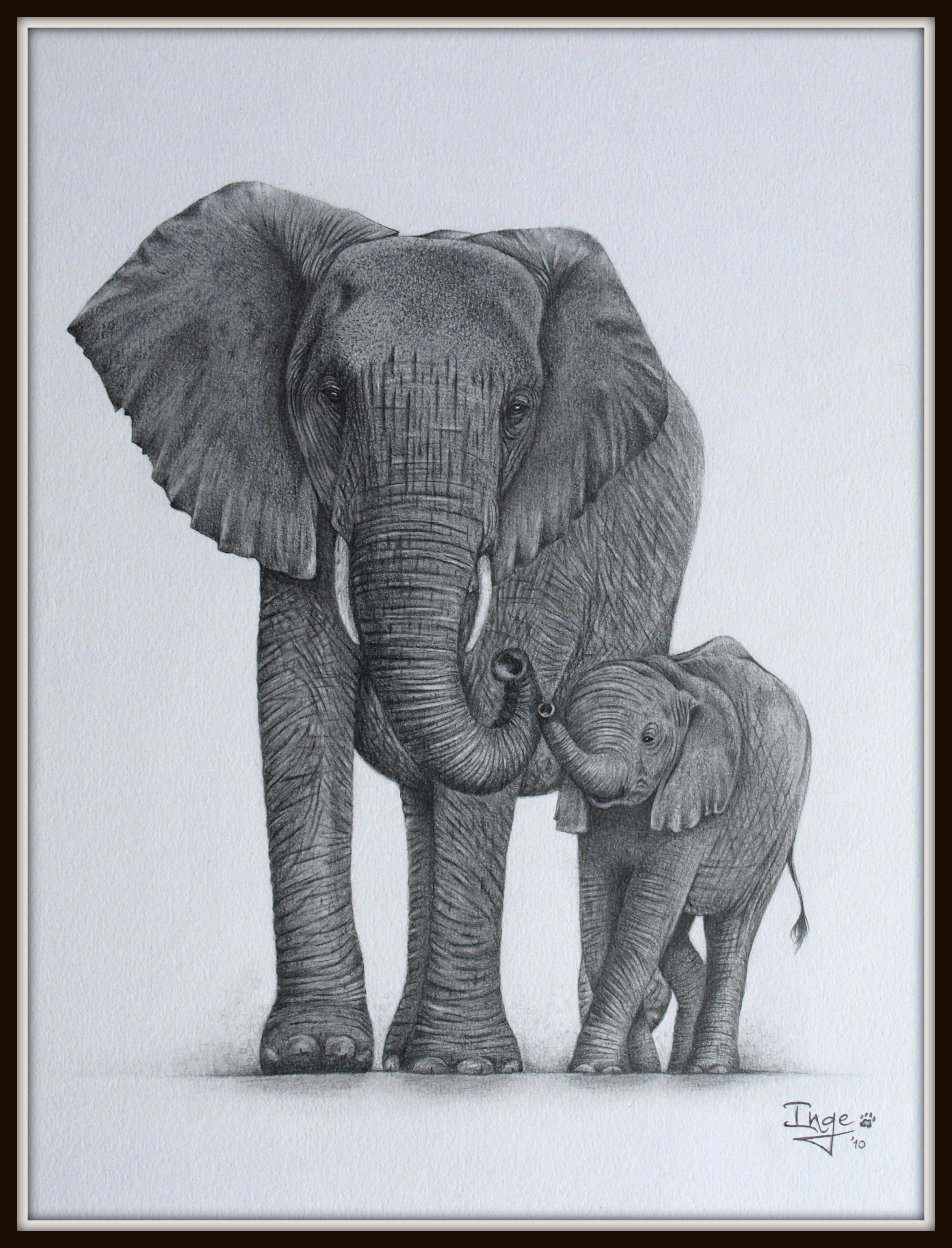 2416x3166 Elephant Mom And Baby By On @