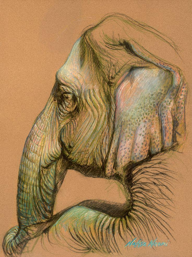 736x982 78 Best Elephant Artworks Images On Art Drawings, Art