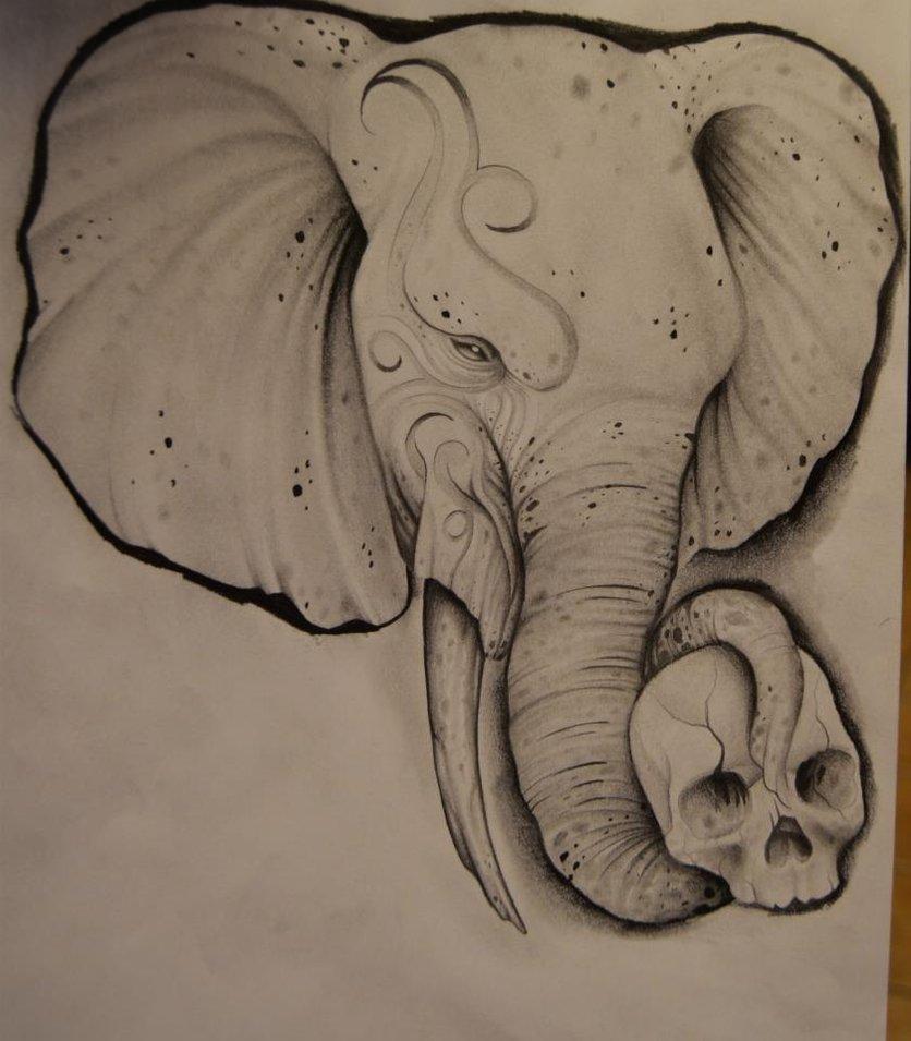 836x955 Elephant Drawing By Johan887766