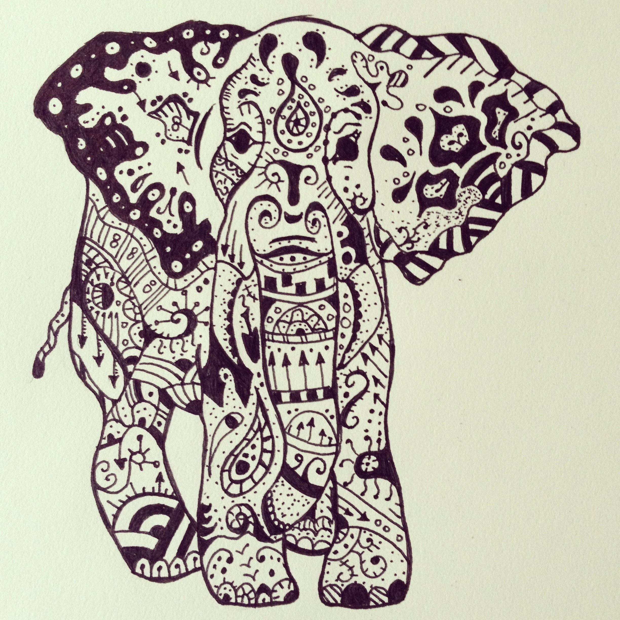 2448x2448 Because Who Doesn'T Love Elephants