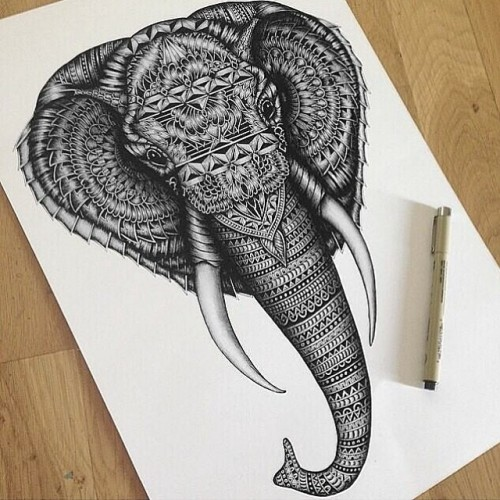 500x500 Pretty Drawing Animals Design Elephant Animal Drawings Tattoo