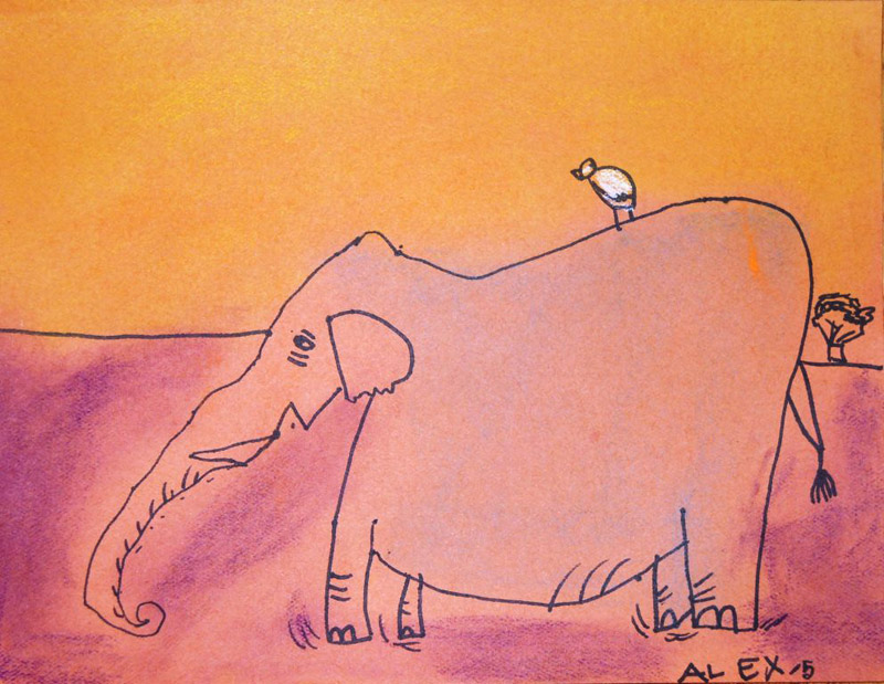 800x619 Elephants Drawing Lessons for Kids of all ages. Salvador Dali