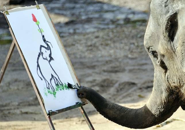 644x453 Can Elephants Really Paint Mnn