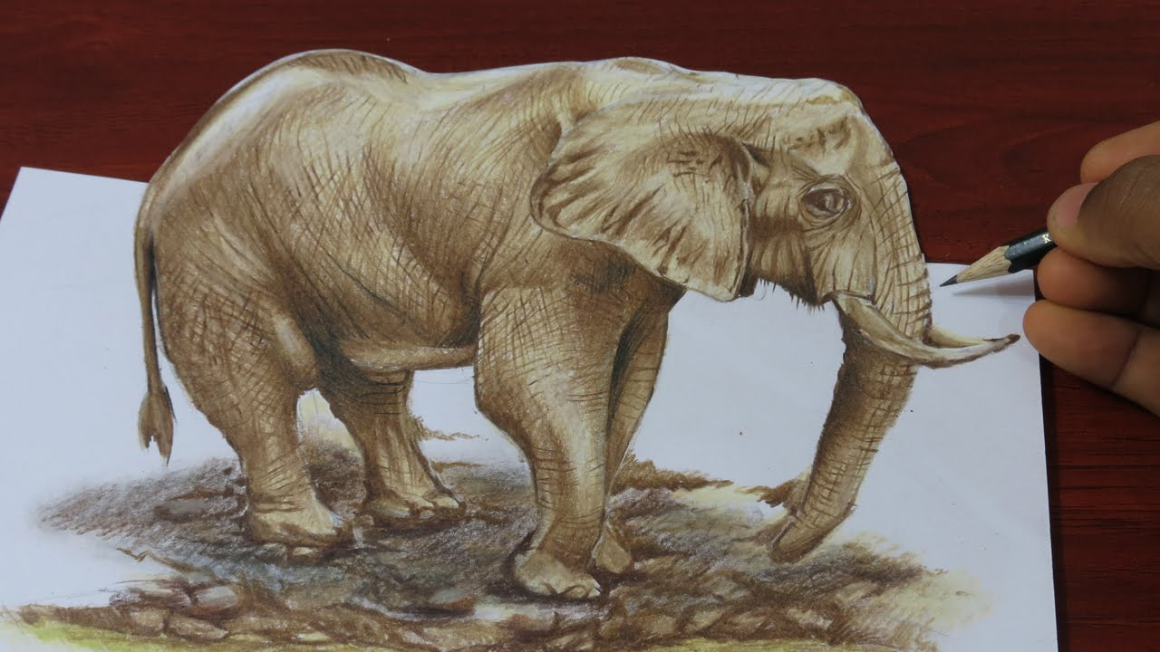 1280x720 Drawing A 3d Elephant
