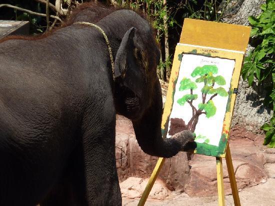 550x412 Elephant Drawing