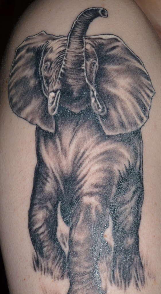 561x1024 Unique Japanese Elephant Tattoos
