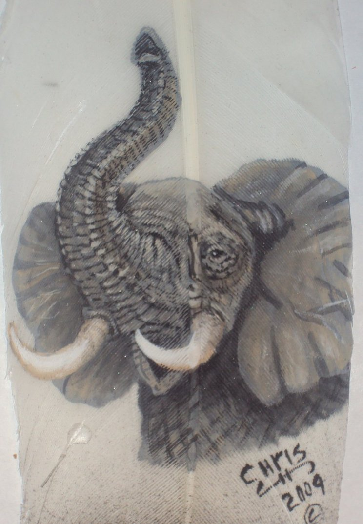 Good 744x1074 African Elephant Trunk Up By Featherlady On DeviantArt