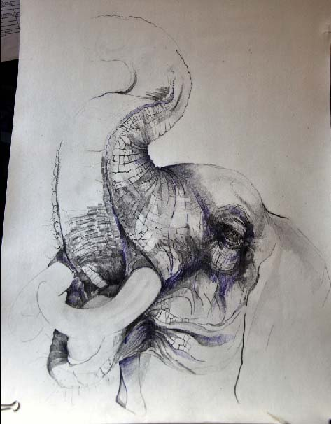 473x606 Elephants, Pencil, Water Colour Pencil And Ink My Art Drawings