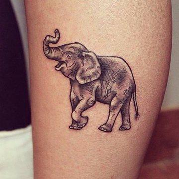 360x360 Up Trunk Elephant Tattoo On Side Leg