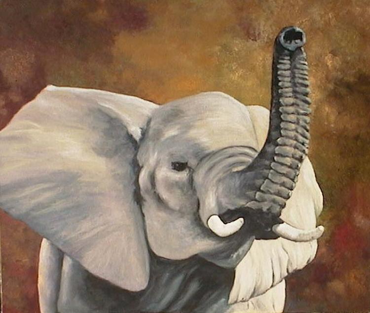 750x633 Pseudoparanormal Elephant Myths