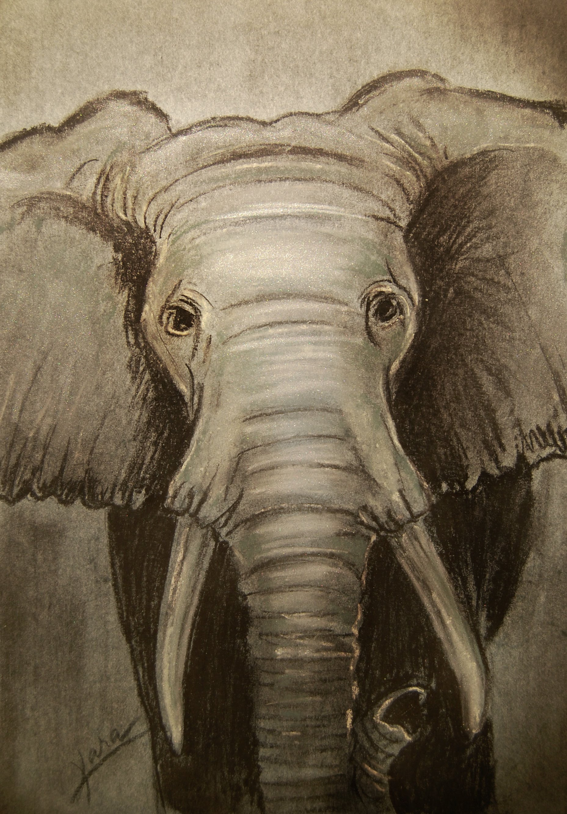 1857x2666 28. The Elephant King (Pastel Drawing Tutorial), By Kara