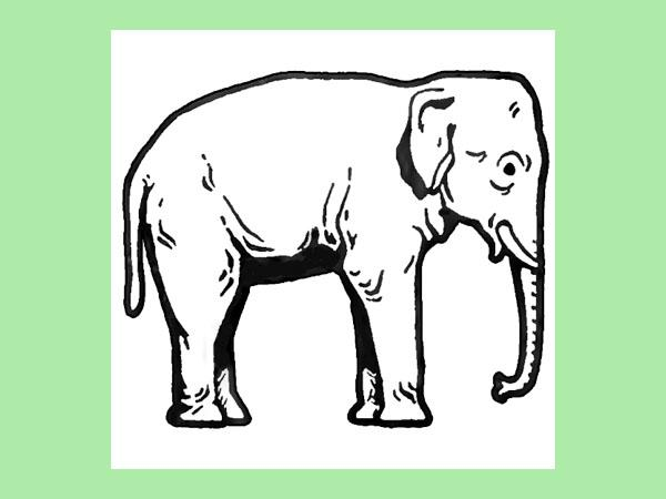 600x450 How To Draw Elephants With Step By Step Drawing Tutorial