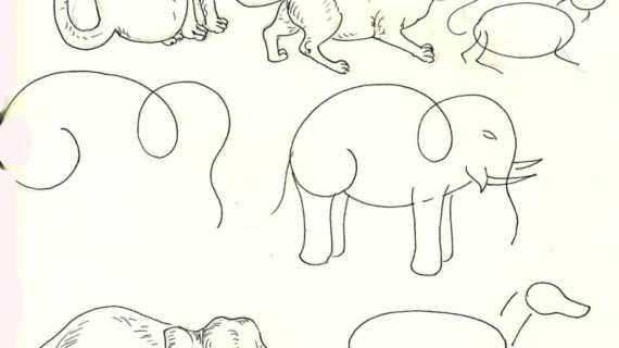 570x320 Step By Step Animal Drawings How To Draw Animals Step Step Drawing