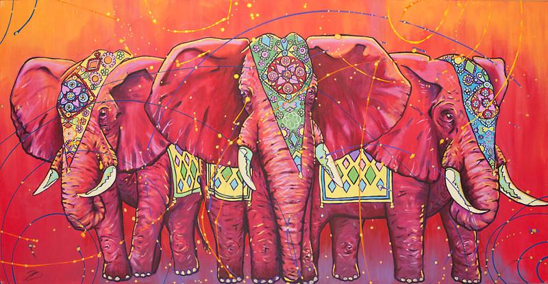 800x414 Indian Elephant Wallpaper