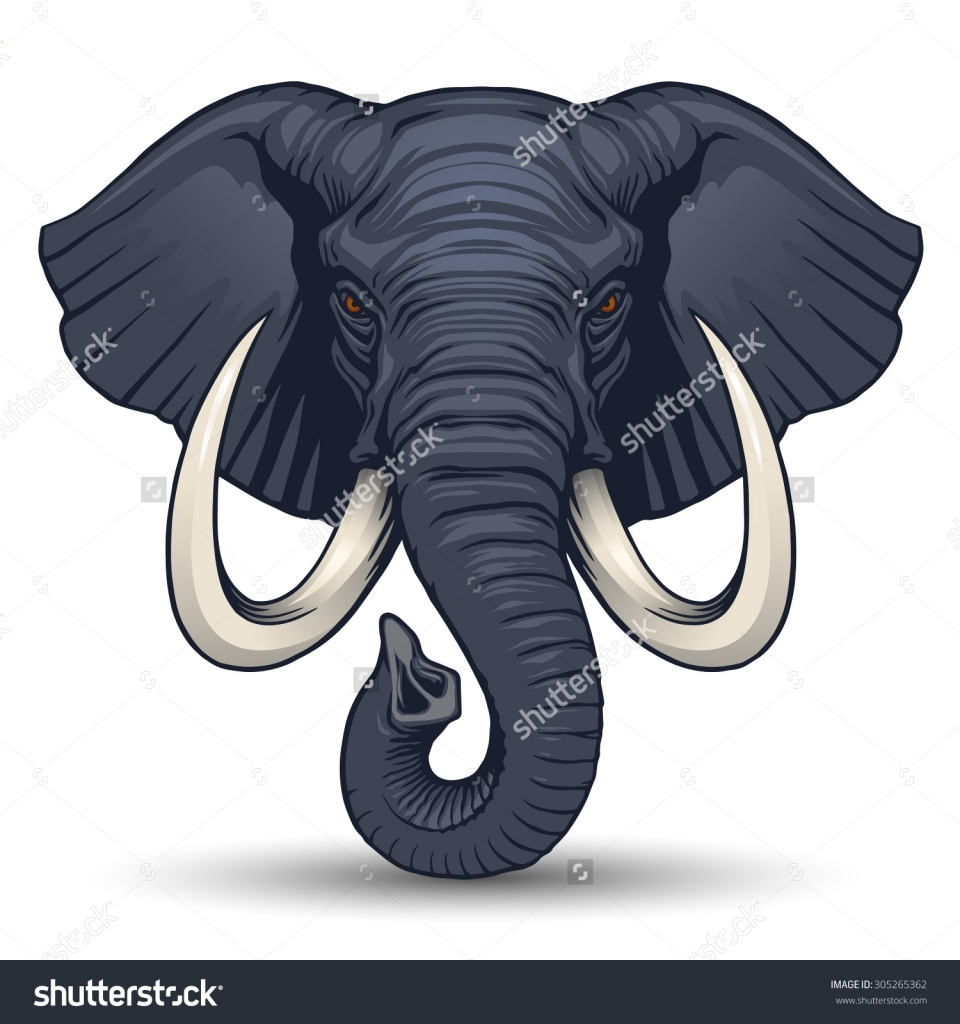 960x1024 Elephant Head Drawing Elephant Head Stock Photos Images Amp