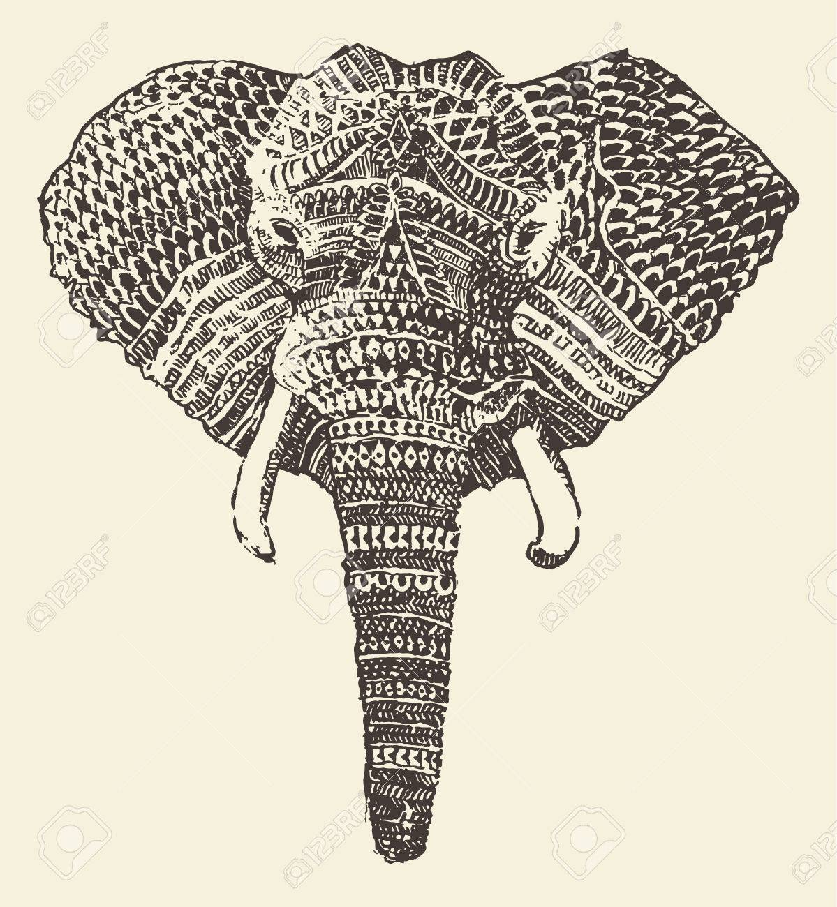 1199x1300 Elephant Head Stock Photos. Royalty Free Business Images