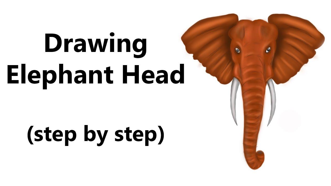 1280x720 How To Draw An Elephant Head