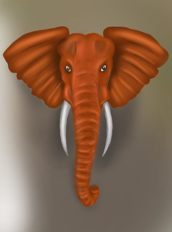 577x778 Learn How To Draw An Elephant Head (Zoo Animals) Step By Step