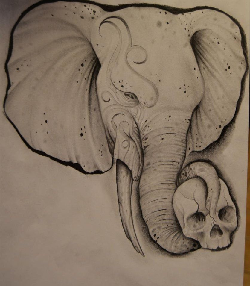 836x955 Elephant Head Drawing Elephant Drawing By Johan887766 Body Art