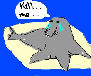 300x250 Deformed Elephant Seal Says Kill Me