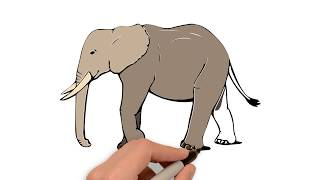 320x180 How To Draw An Elephant Side View