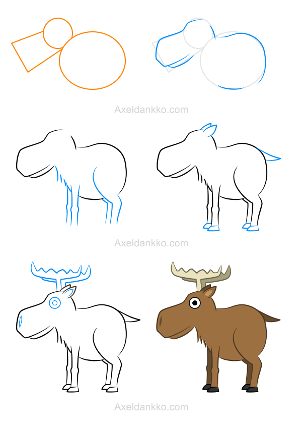 600x836 How To Draw A Moose