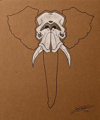201x240 Elephant Skull Drawing