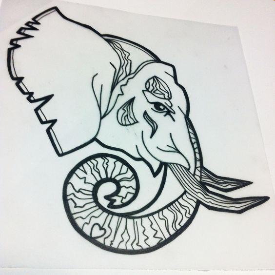 564x564 Elephant Skull