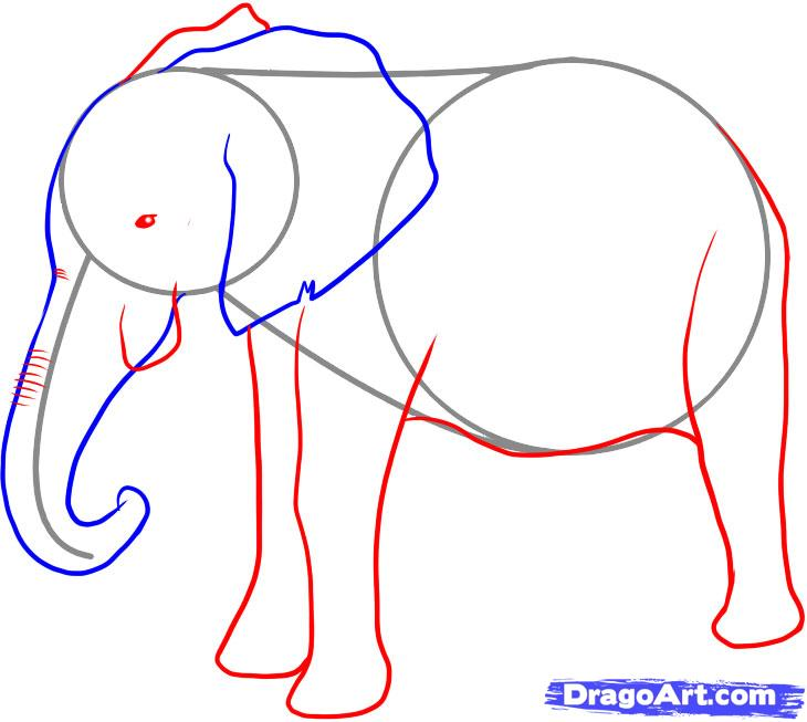 Elephant Step By Step Drawing At Getdrawings Com Free For Personal