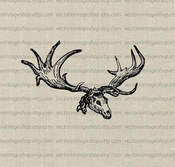 570x543 Elk Skull Vector Clipart Instant Download Antler Animal