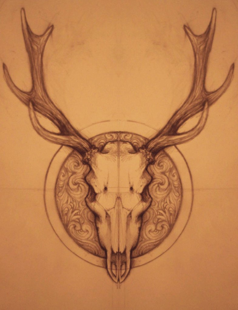 elk skull drawing at getdrawings com free for personal use elk rh getdrawings com Elk Antler Tattoo Designs elk skull tattoo designs