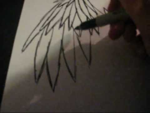 480x360 How I Draw Emo Angel Wings