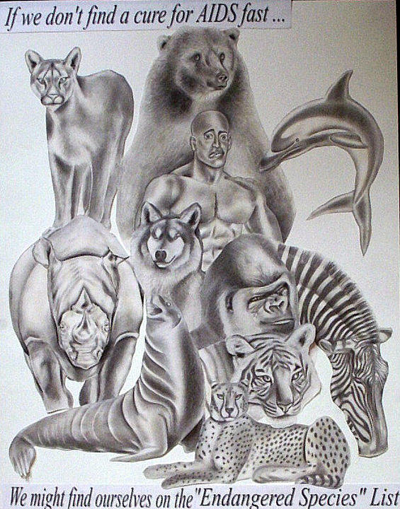 565x720 Endangered Species Drawing By Rick Hill