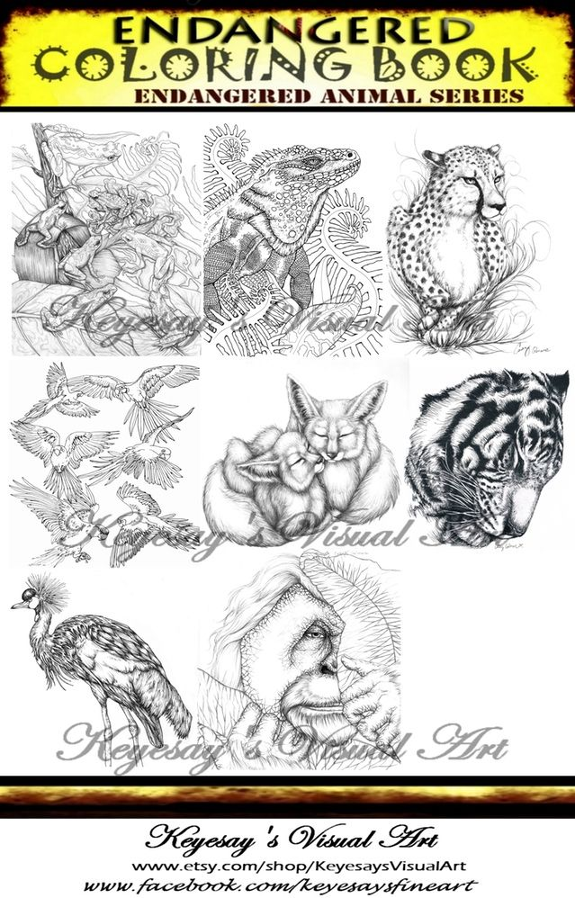 639x998 15 Best Endangered Coloring Book Series Featuring Endangered