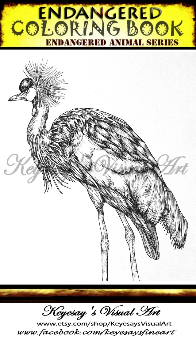 639x1110 Gray Crowned Crane Endangered Coloring Book Series Featuring