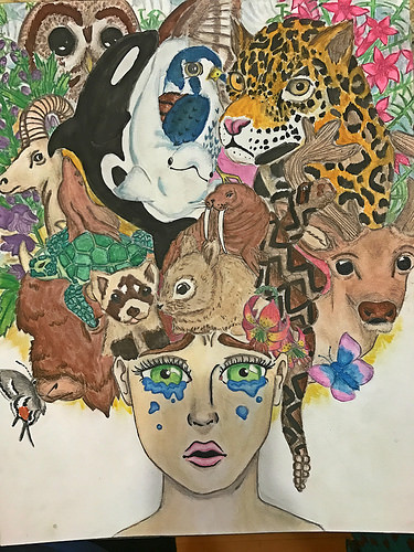 375x500 Saving Endangered Species Youth Art Contest Semifinalists