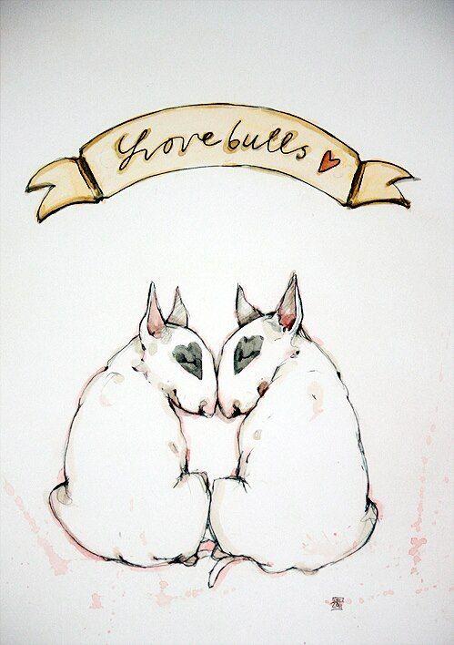 499x708 De 65 Bedste Billeder Fra Bull Terriers