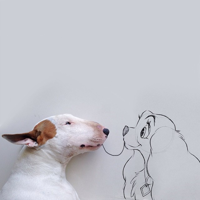 640x640 Dog Owner Creates Fun Illustrations With His Bull Terrier Bored
