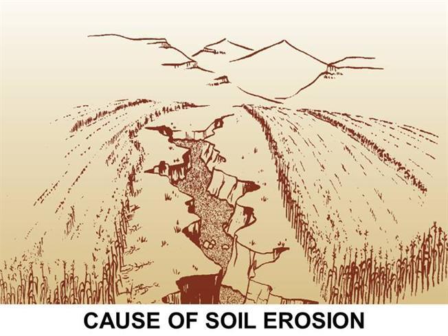 652x489 Cause Of Soil Erosion Authorstream