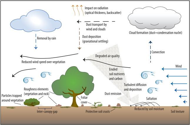 646x425 Enhancing Wind Erosion Monitoring And Assessment For U.s.