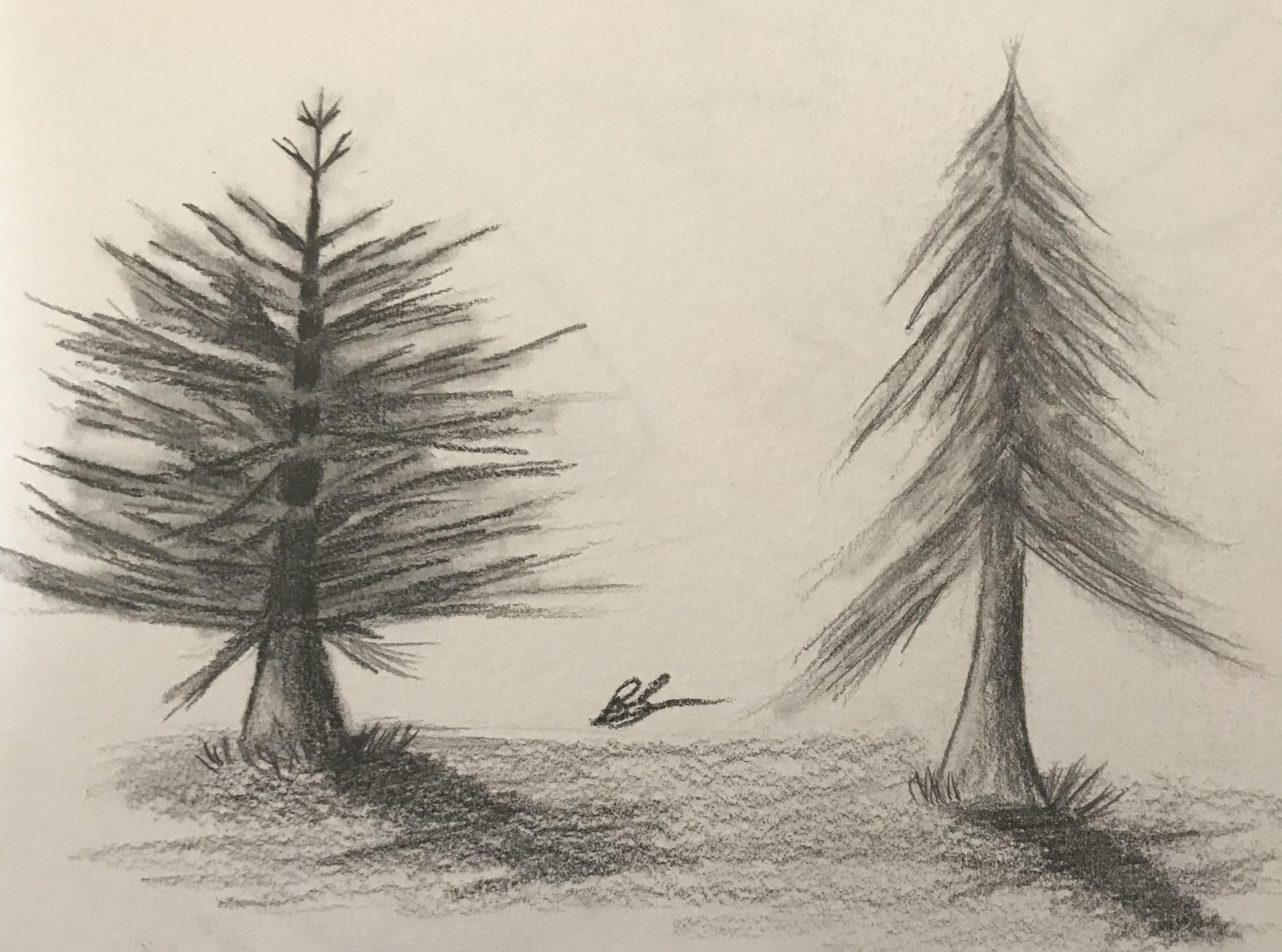 3024x2246 365 Day Drawing Challenge Week 18 Learning To Draw Landscapes