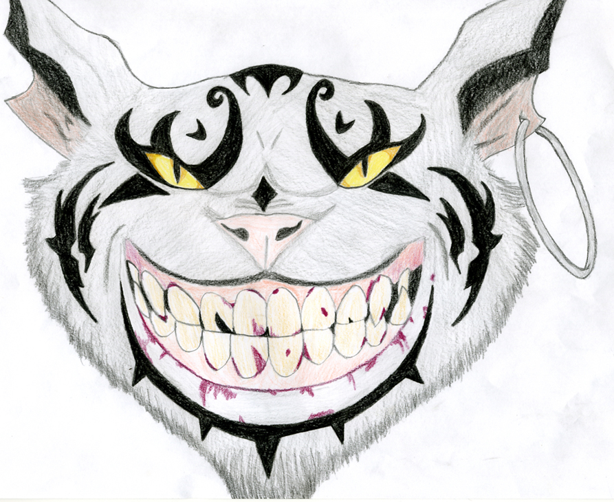 893x730 The Cheshire Cat By Evil Dark Faerie