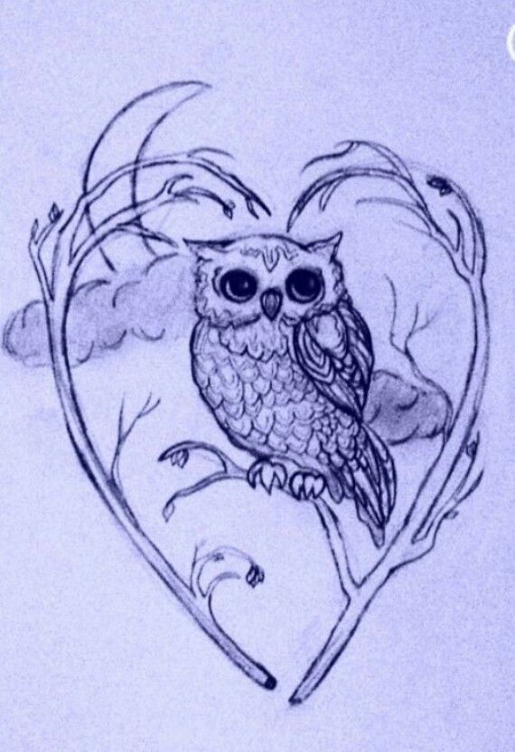 570x832 When A Young Owl Is Abducted By An Evil Owl Army, He Must Escape