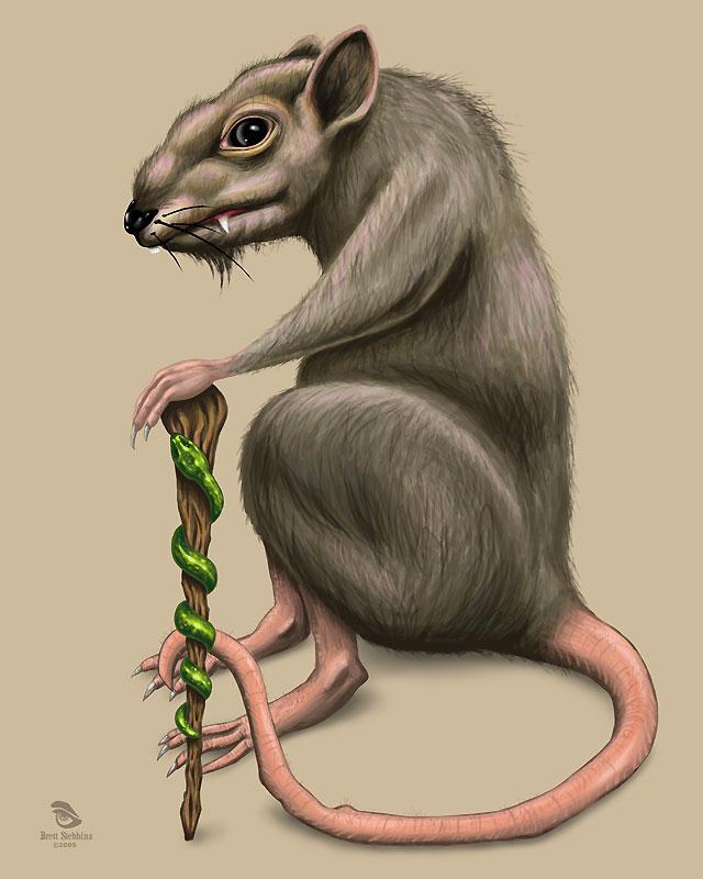 640x800 Evil Rat By Wrinkledlight