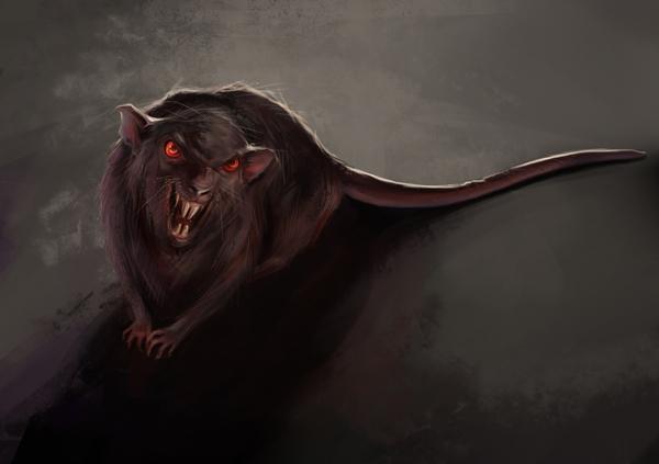 600x423 Evil Rat By Vilebedeva