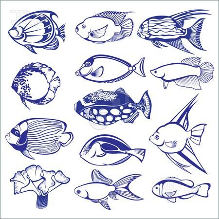 450x450 Tropical Fish Drawings